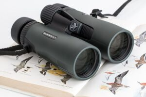 What Are The Best Binoculars For Birding?